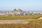 Spanish town in La Rioja with vineyards — Stock Photo