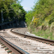 Railroad track — Stock Photo #9023505
