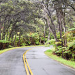 Chain of Craters Road, Hawaii Volcanoes National Park — Stock Photo #9023686