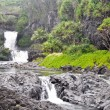Seven Sacred Pools, Maui — Stock Photo #9023742