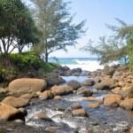 River at Na Pali Coast trail, Kauai (Hawaii) — Stock Photo