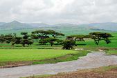 Ethiopia highlands — Stock Photo