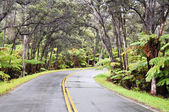 Chain of Craters Road, Hawaii Volcanoes National Park — Stock Photo
