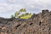 Lava field at Kekaha Kai state park, Hawaii's Big Island — Stock Photo
