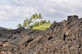 Lava field at Kekaha Kai state park, Hawaii's Big Island — Stock Photo