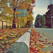 Autumn road — Stock Photo #9451095