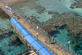 Formaciones de coral 2 — Foto de Stock