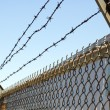 Stock Photo: Barbwire