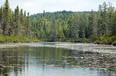 Otterslide Lake — Stock Photo