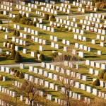 Cementery — Stock Photo #8859185