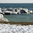 Stock Photo: Ice in the shore