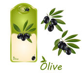 Olive label — Stock Vector