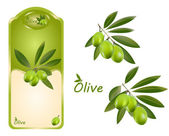 Olive green — Stock Vector
