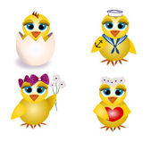 Set of four chicks — Stock Vector