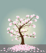 Magnolia tree — Stock Vector