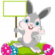 Easter Bunny width a board — Stock Vector #9829761