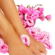 Stockfoto: French pedicure
