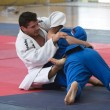 Judo EUROPOLYB — Stock Photo #8705670