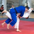 Judo Competition — Stock Photo #8706275