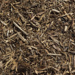 Close up of Mulch Background — Stock Photo