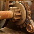 Royalty-Free Stock Photo: Rusted Gears Close Up