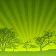 Green Sunset Light Rays Nature Background — Stock Photo #8656933