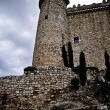 Torijas Castle in Spain , defense tower — Photo