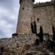 Torijas Castle in Spain , defense tower — Stock Photo #10112542