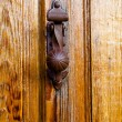 Closeup wood door with textured material — Foto Stock