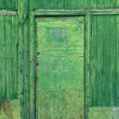 Green rusty door — Stock Photo #10112886