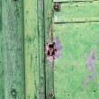 Green rusty door — Stock Photo