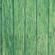 Green wooden panels. Ancient door — Stock Photo