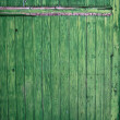 Green wooden panel door. Aged texture — Stock Photo