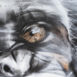 Fragment of urbgraffiti close-up, monkey — Stock Photo #10113253