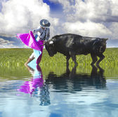 Spanish Bullfight with water reflection. Matador in Ring with Bu — Stock Photo