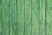 Gröna träskivor. gammal dörr — Stockfoto