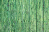 Yeşil ahşap paneller. eski kapı — Stok fotoğraf
