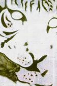 Tijger hoofd grafitti, segment straatkunst — Stockfoto
