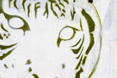 Tiger head grafitti close-up, segment street art — Stock Photo