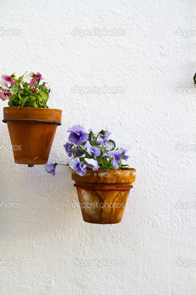 Spanische wand mit sch nen pflanzen andalusische for Blumentopf wand