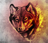 Sketch of tattoo art, Illustration of a Wolf head — Stock Photo