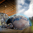 Ecology concept , planet earth in a scrap industrial site - Stock Photo