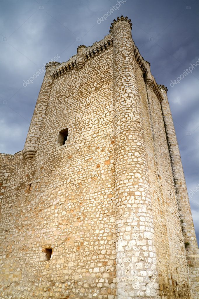 Castle in Spain, medieval building.  Stockfoto #8668064