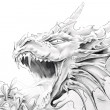 Tattoo art, sketch of a medieval dragon — Stock Photo #8685090