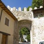 Puerta de la Cadena, Spanish wall, Brihuega, Spain — Stock Photo #8741962