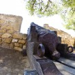 Medieval Canon at morrow, Denia Spain - Stock Photo