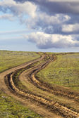 Country road with mud, ruts — Stock Photo