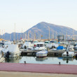 Boats moored in harbour near Denia, Spain - Photo