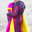 Stock Photo: Bullfighters costumes