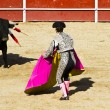 Stock Photo: Matador and bull in bullfight. Madrid, Spain.